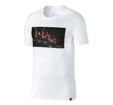 Remera-Jordan-Dry-Flight-Photo